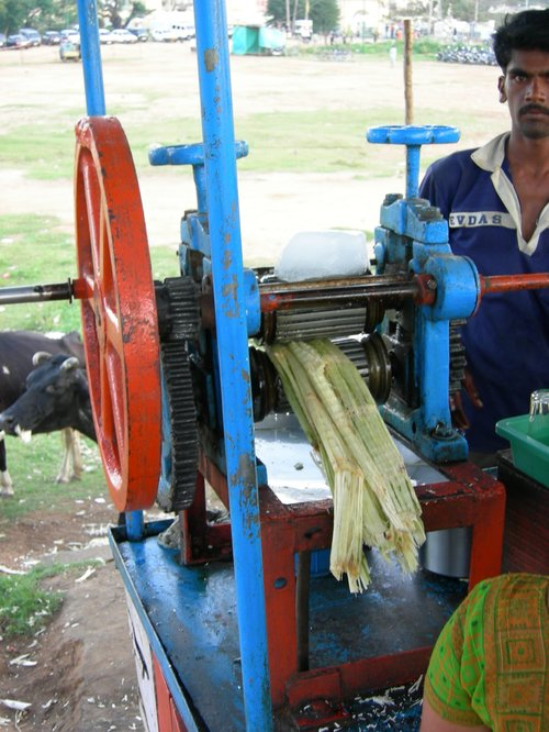 Cane Juice in the Making